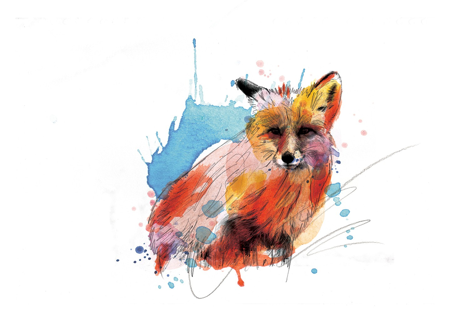0057 Dm Out Foxed Art