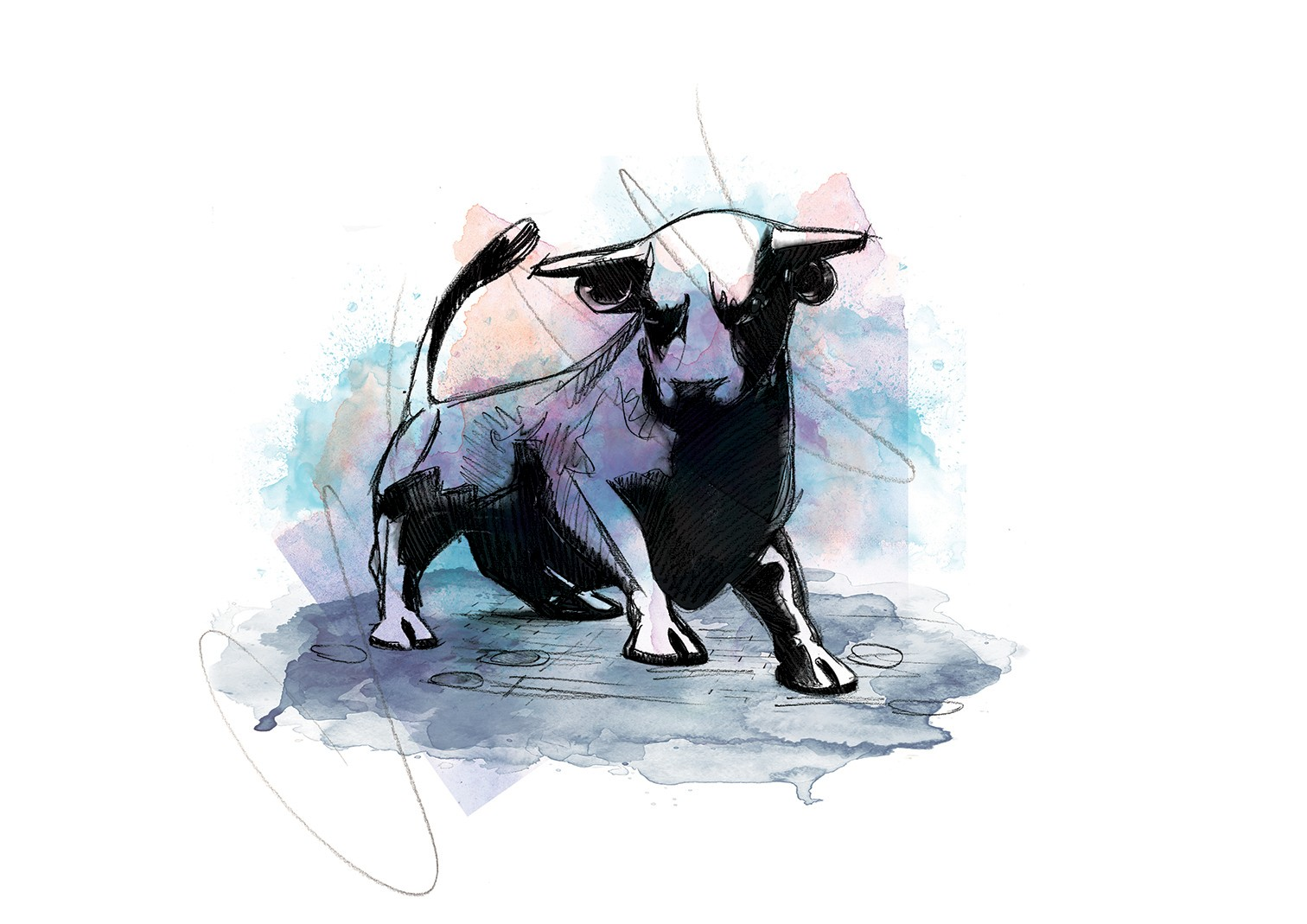 008 Dm It 039 S All Bull Art