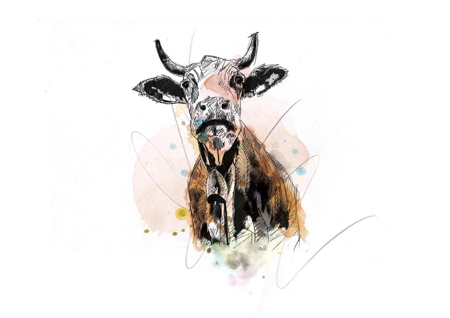 041 Dm Cows Daisy Art