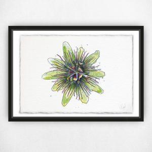 A Passionate Flower - Original Watercolour