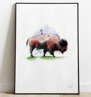 Big Bad Bison - Bison art print