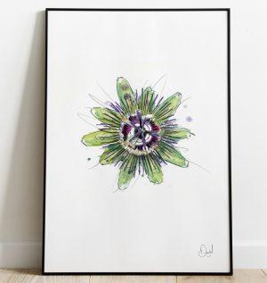Passion flower - A passionate flower art print