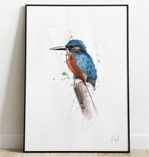 Kingfisher - The Kingfisher and I art print