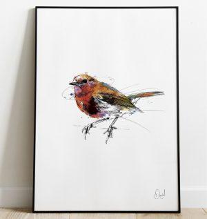 Robin Lowe - Robin redbreast christmas art print