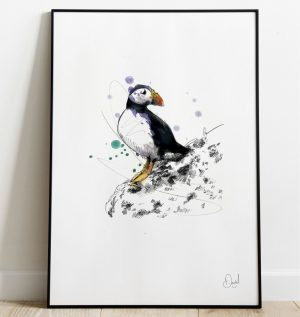 Out of puff - Puffin art print