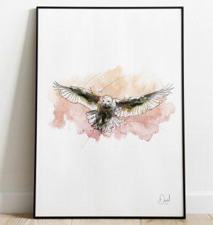 Snowy the Owl - Bird art print
