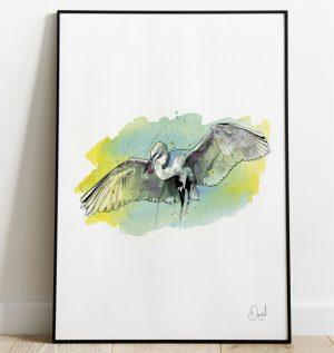 The Stork pays a visit - Bird art print