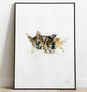 Tigger the Cat art print