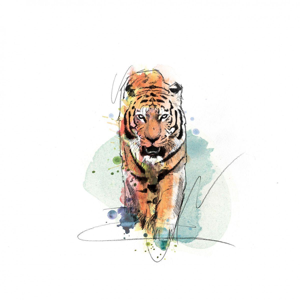 00242 Dm Tiger A Tiger Came To Tea Art